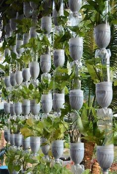 Vertical gardens—think vertical plant wall—are one of the hottest new garden trends and yet it's one of the oldest. Vertical garden elements can draw attention to an area or disguise an… Vertical Plant Wall, Vertical Garden Design, Vertical Vegetable Gardens, Vegetable Gardening, Bottle Garden, Diy Décoration, Succulents Garden, Garden Planning, Garden Projects
