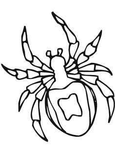 28 Best Spider Coloring Pages images in 2019 | Spider ...