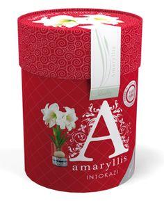 € 9,95 (incl. btw) Amaryllis Intokazi maat 28/30 in een klassiek vormgegeven koker. De koker is in een barok stijl vormgegeven.  In de koker zit een witte Amaryllis, glazen vaas en stenen. Deze verpakking bevat alles om de Amaryllis in 6 tot 8 weken te laten bloeien. Het enige wat toegevoegd moet worden is water. Op de koker vind je de plantinstructies. Een mooie verpakking voor een groen cadeau.