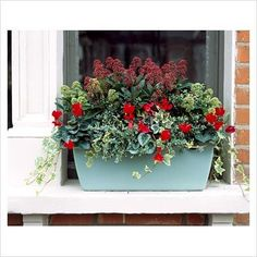 ideas for winter windowbox