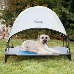 Cool Pet Cot Canopy