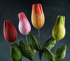 giant crepe paper tulips