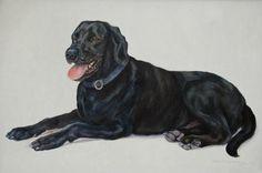 Black Lab by Clara Daughtridge – Morris & Essex Kennel Club