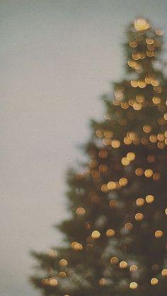 [クリスマス]ツリーのおしゃれ写真iPhone壁紙 iPhone 5/5S 6/6S PLUS SE Wallpaper Background