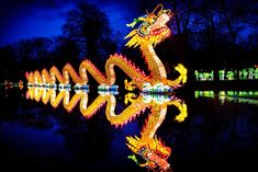 Perhaps most famous of all is the 200-foot long dragon, stealing the show with hundreds of LED lights.