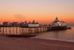 http://www.flickriver.com/photos/fasteddie42/1809283039/  Starlings over Eastbourne pier