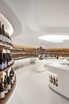 Now THATS a wine cellar!