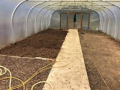 Using manure in the polytunnel