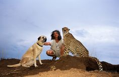 Dr. Laurie Marker, Koya the Dog and Chewbakka the Cheetah.