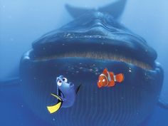 Does your Finding Nemo fandom run so deep that it would see anglerfish in the dark depths of the ocean? Test your level of Finding Nemo fandom with our quiz. Disney Pixar, All Disney Movies, Film Disney, Disney Stuff, Finding Nemo Whale, Finding Dory, Dory And Marlin, Big Whale, Toy Story 1995