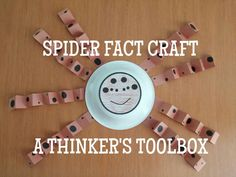 Spider Fact Craft by A Thinker's Toolbox