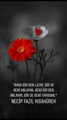 ♥️ilhan RÜZGAR ❤️ Favorite Quotes, My Favorite Things, Galaxy Wallpaper, Meaningful Words, Installation Art, Cool Words, Allah, World, Amazing