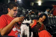 Uma sessão de cinema a pensar nos animais de estimação decorreu esta sexta-feira em Madrid, tendo na plateia cerca de uma centena de pessoas e 35 cães.