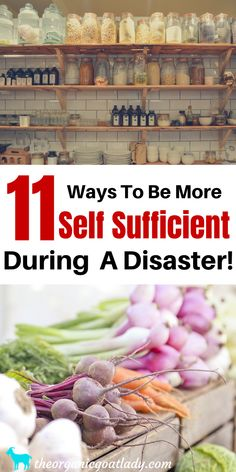 Self Sufficiency Survival Disaster Survival How to Be Self Sufficient Homesteading Emergency Food, Survival Food, Homestead Survival, Wilderness Survival, Survival Prepping, Emergency Preparedness, Survival Skills, Emergency Planning, Emergency Kits