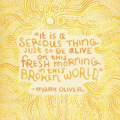 Mary Oliver passed away this week. Yoga teachers around the world have been inspired by her. Mary Oliver's poems have made me realize that… The Words, Cool Words, Words Quotes, Me Quotes, Motivational Quotes, Inspirational Quotes, Sayings, Strong Quotes, Happy Quotes
