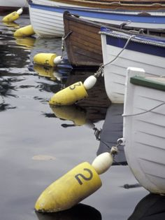 Mooring Buoys at the Center for Wooden Boats, Seattle, Washington,