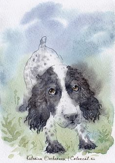 Postcards with watercolor dogs English Springer Spaniel, Dog Paintings, Dog Art, Illustrators, Moose Art, Watercolor, Drawings, Dogs, Spaniels