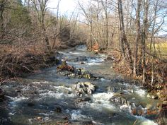 Gorgeous stream, this one in Earlysville Charlottesville, Pictures, Painting, Art, Photos, Art Background, Painting Art, Kunst, Paintings