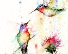 HUMMINGBIRD Watercolor Bird Print Hummingbird Painting Bird