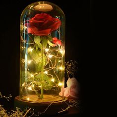 WR Beauty and the Beast Enchanted Red Rose Dome Lamp Glass Valentine's Gifts Her Jar Lights, Bottle Lights, Led String Lights, Bueaty And The Beast, Rose Dome, Beautiful Rose Flowers, Enchanted Rose, Led Night Light, Night Lights