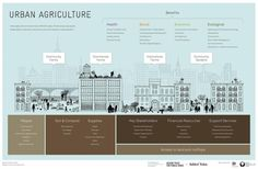 """AgriCultures Network su Twitter: """"#Infographic: Demonstrating the Benefits of Urban Agriculture http://t.co/IupH3YWjSO"""""""