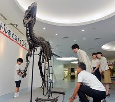 Prince Akishino family visited Fukui Prefectural Dinosaur Museum on August 10, 2013