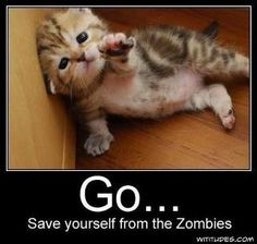 save yourself!
