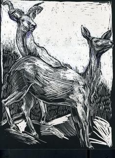 Adventures in Scratchboard by Elizabeth Colantuoni, via Behance Deer Skeleton, Scratchboard Art, Animal Skeletons, Scratch Art, Arts Ed, Sgraffito, Triptych, Hulk, Blackwork