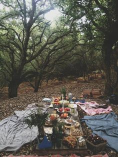 Ourdoor Fall Picnic, De Alma e Coração