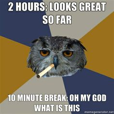 Art Student Owl   Know Your Meme