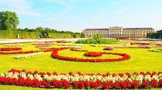 人が少ない時を狙って朝一でシェーンブルン宮殿へ✨  庭園だけなら早朝から夜まで無料で開放されてるみたい! こんな綺麗な場所にタダで入れるなんて最高すぎ  #080716#オーストリア#ウィーン#ヴィエナ#ヨーロッパ周遊#ひとり旅#世界遺産#絶景#travel#trip#Austria#wien#vienna#worldheritage#europe#schlossschönbrunn#シェーンブルン宮殿