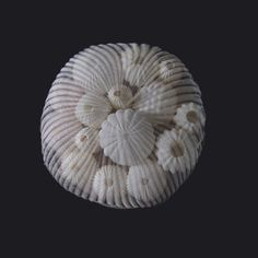 orbe-tissus-art-mariko-kusumoto-06