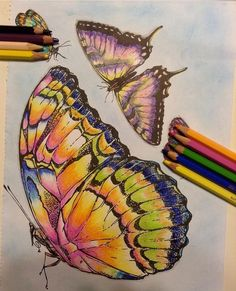 Color Pencil Drawing Inspirational Coloring Pages por Rita Bittar Colouring Pages, Adult Coloring Pages, Coloring Books, Coloring Tips, Butterfly Drawing, Colored Pencil Techniques, Colouring Techniques, Polychromos, Color Pencil Art