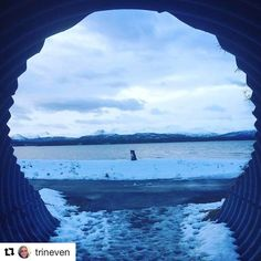 Det finnes en hund i enden av tunnelen. #reisetips #reiseliv #reiseblogger #reiseråd  #Repost @trineven with @repostapp  Ut på tur  #dogwalking #lightintheendofthetunnel #photographylovers #pocket_norway #pretty_shotz #photooftheday #dreamchasersnorway #reiseradet #norge #norway2day #nordicconnection #earthislimit #utno #landscape