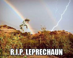 Poor leprechaun...
