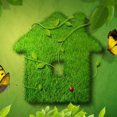 Earth Day..
