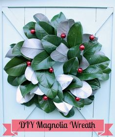 How to make wreath with magnolia leaves