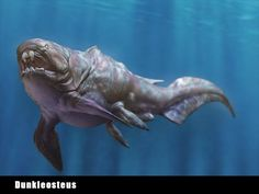 「古代生物」の画像検索結果