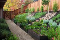 Sloped garden. Steel planters. [http://www.houzz.com/photos/1898414/B-Willow-Spring-contemporary-landscape-san-francisco]