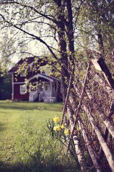 varhais kevät
