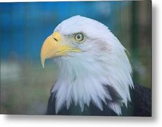 #Proud To Be Metal Print By Bonfire #Photography