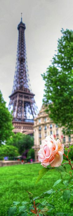 Eiffel Tower, Paris, France. Had lunch on a park bench right in this vicinity.  Incredibly beautiful..