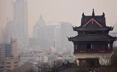 China's Air Pollution Attacking Plants As Well As People...I guess they must hold their breath...for how long?