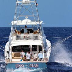 "@vikingyachtcompany 62 convertible ""Uno Mas"" fishing in the DR out of Marina Cap Cana @marinacapcana by billfish_movement"