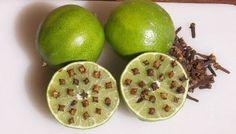 REPELENTE NATURAL DE LIMON Y CLAVO DE OLOR http://tlvz.com/no-podras-creer-lo-que-pasa-si-combinas-limon-con-clavo-de-olor-de-esta-forma/