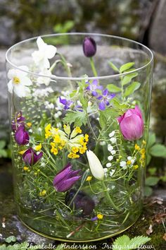 Glass cylinder vase with spring blooms from the garden