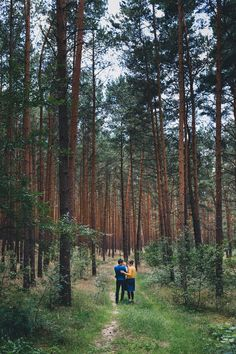 Family photo shoot in the forests around Berlin. Geometric composition.