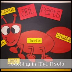 Ant Parts...anchor chart. :)