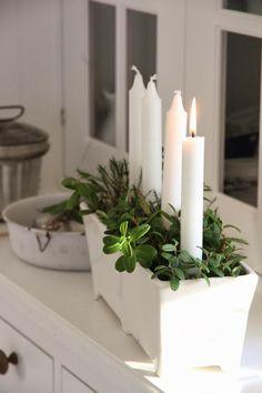 Kynttilöitä, sammalta ja mustikan/ puolukan varpuja *♡*