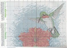 "Gallery.ru / Фото #26 - Wings""Asas"" - nandauromi Cross Stitch Bird, Cross Stitch Designs, Cross Stitch Patterns, Natural Forms, Floral, Vintage World Maps, Wings, Diagram, Creatures"